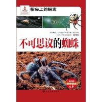 不可思议的蜘蛛