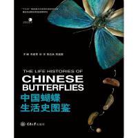中国蝴蝶生活史图鉴 重庆大学出版社