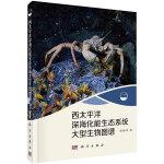 西太平洋深海化能生态系统大型生物图谱