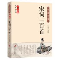 宋词三百首 中华传统文化经典 新课标 无障碍阅读
