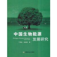 中国生物能源发展研究