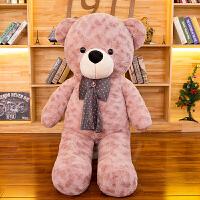 毛绒玩具泰迪猫抱抱熊公仔大号1.6米布娃娃情人节生日礼物女生