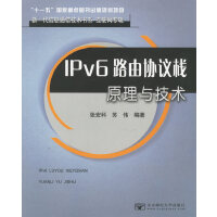 IPv6路由协议栈原理与技术