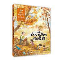 金波四季童话 秋天卷・古古丢先生的遭遇(注音美绘版)
