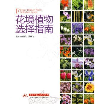 花境植物选择指南