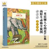 奇想国多莱尔作品-动物大书精装硬壳绘本儿童自然动物科普启蒙认知百科