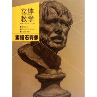 立体教学 素描石膏像