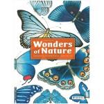【预订】 Wonders of Nature 自然奇观:鸟类,昆虫和鱼类 英文原版科普认知绘本