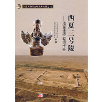 西夏三号陵――地面遗迹发掘报告