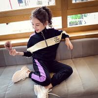 女童运动套装洋气春装女孩卫衣套装立领时髦春秋中大童两件套