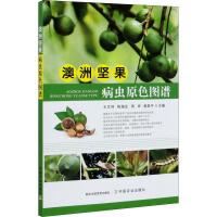 澳洲坚果病虫原色图谱 中国农业出版社