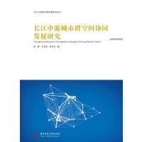长江中游城市群空间协同发展研究