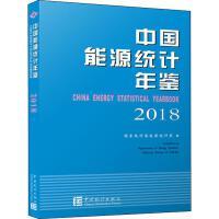 中国能源统计年鉴 2018 中国统计出版社