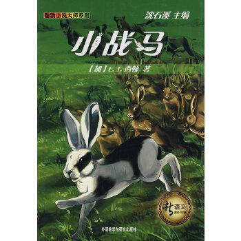小战马(pdf+txt+epub+azw3+mobi电子书在线阅读下载)
