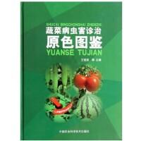 蔬菜病虫害诊治原色图鉴