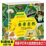 亲亲自然 11册(培养孩子观察细节能力 ,拥抱大自然)耕林