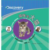 猫咪变大猫(精)/探索频道动物变变变