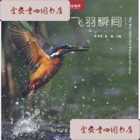 【旧书二手书9成新】飞羽瞬间/张书清、赵超中国大百科全书出版社