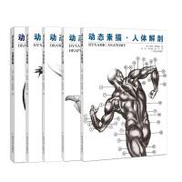 美国动态素描系列(套装全五册)