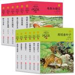 动物银河88元彩金短信大王沈石溪品藏书系 升级版(青红特辑 套装共12册)