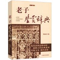 老子鉴赏辞典(文通版)