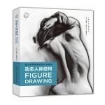 西方经典美术技法译丛――动态人体结构:迪士尼导师教你画人体姿态