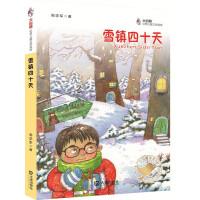大白鲸幻想儿童文学读库:雪镇四十天
