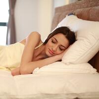 康乃馨织造英威达纤维枕五酒店枕头枕芯单人家用定制 74*48cm一只