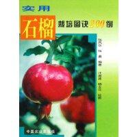 实用石榴栽培图诀200例 张凤仪 9787109104723