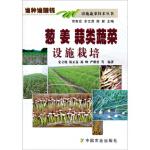 谁种谁赚钱 设施蔬菜技术丛书:葱姜蒜类蔬菜设施栽培 宋立晓,陈正泰,杨峰 等 9787109184305