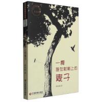 【9成新正版二手书旧书】传奇中国图书系列(美文卷):一棵挂在树梢上的麦子 谭现锁