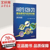 ANSYS ICEM CFD基础教程与实例详解 纪兵兵,张晓霞,古艳 编著