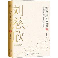 刘慈欣作品精选 中国太阳 长江文艺出版社