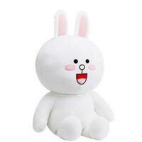 六一儿童节520韩国布朗熊公仔可妮兔玩偶毛绒玩具大号布娃娃抱抱熊生日礼物女生520礼物母亲节