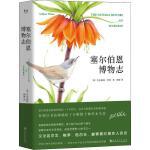 塞尔伯恩博物志 上海文化出版社