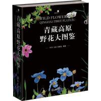 青藏高原野花大图鉴 重庆大学出版社