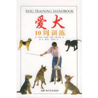 爱犬10周训练
