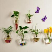 绿萝壁挂鱼缸水培花瓶创意家居饰品客厅墙上花盆墙壁书房装饰情人节礼物 六个花瓶组合+彩石+挂钩+绿萝