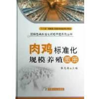 肉鸡标准化规模养殖图册(图解畜禽标准化规模养殖系列丛书)