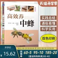 正版高效养中蜂蜜蜂养殖技术书籍养蜂书籍实用手册中华蜂土蜂中蜂饲养新技术书农业科学养殖技术养蜜蜂技术蜜蜂养殖大全书籍养蜂书