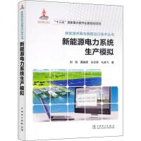新能源电力系统生产模拟 中国电力出版社