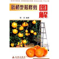 【二手旧书九成新】脐橙整形修剪图解陈杰著金盾出版社9787508234281