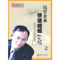 民营企业快速崛起密码(6DVD+11讲数)(软件)