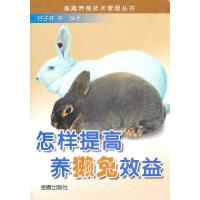 怎样提高养獭兔效益