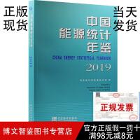 2019中国能源统计年鉴 中国统计出版社 2020年11月出版