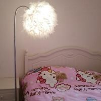 【品牌特惠】圆球羽毛落地灯北欧创意简约个性客厅卧室床头护眼立式台灯
