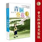 曹文轩纯美圣淘沙娱乐场:青铜葵花