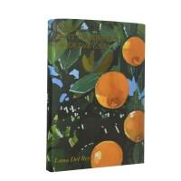 【预订】拉娜・德雷诗歌集 Lana Del Rey 英文原版 Violet Bent Backwards Over th