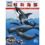 《什么是什么》之――鲸和海豚