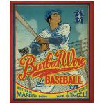 【预订】铁丝网棒球 Barbed Wire Baseball 英文原版绘本插画师清水裕子作品